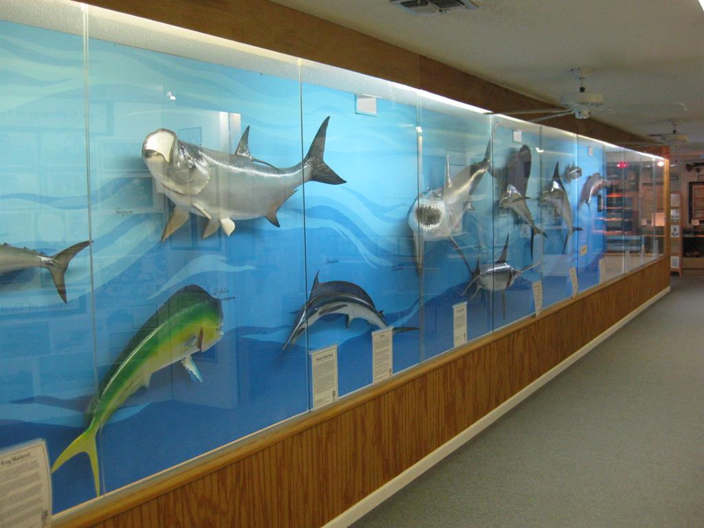 Explore Destins Rich History at the Destin History  Fishing Museum